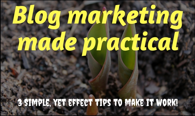 3 Simple but efficient blog marketing tips to market your blog!